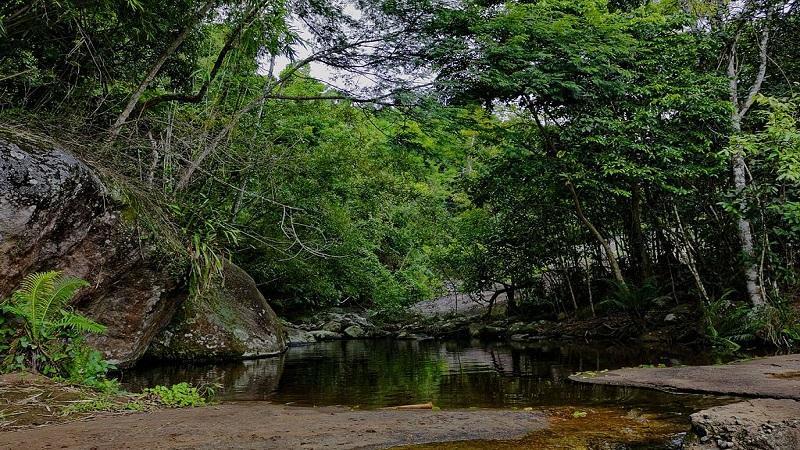 As melhores trilhas de Ilhabela
