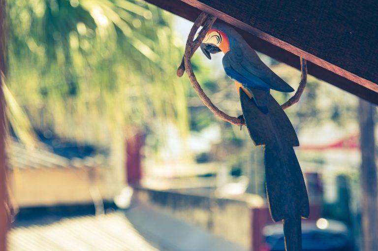 Velinn HPJ Ilhabela Hostel Arara 2