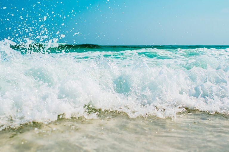 conheca a praia do engenho dagua com o velinn pousada ponta do pequeah