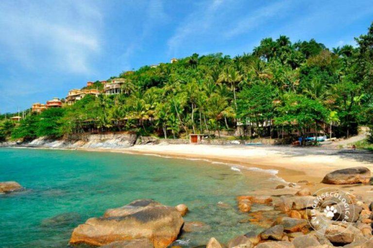 praia do veloso ilhabela velinn